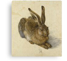 Albrecht Durer - Hare 1502. Young hare painting: cute hare,  hares,  rabbits,  animals,  bunnies,  realistic ,  wild,  animal,  rabbit,  wild animals,  fur  Canvas Print