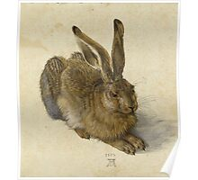 Albrecht Durer - Hare 1502. Young hare painting: cute hare,  hares,  rabbits,  animals,  bunnies,  realistic ,  wild,  animal,  rabbit,  wild animals,  fur  Poster