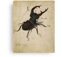 Vintage famous art - Albrecht Durer - Stag Beetle 1505 Canvas Print