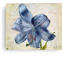 Vintage famous art - Albrecht Durer - Study Of A Lily Canvas Print