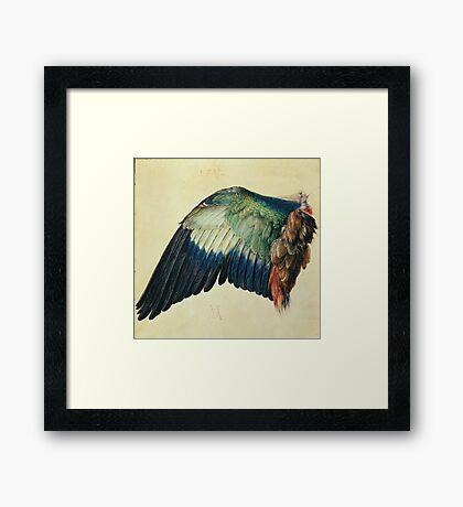 Vintage famous art - Albrecht Durer - Wing Of A Blue Roller Framed Print