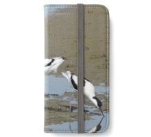 Avocet Trio iPhone Wallet/Case/Skin