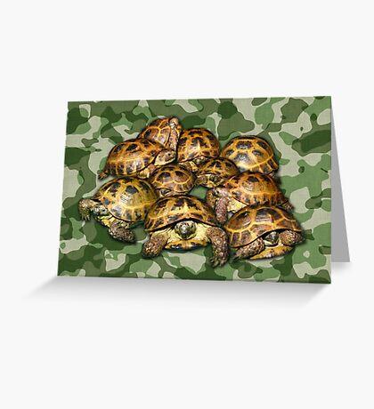Greek Tortoise Group on Green Camo Greeting Card