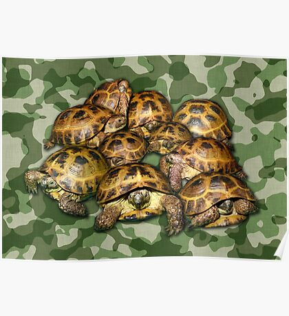 Greek Tortoise Group on Green Camo Poster