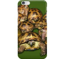 Greek Tortoise Group on Darn Green Background iPhone Case/Skin