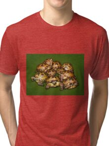 Greek Tortoise Group on Darn Green Background Tri-blend T-Shirt