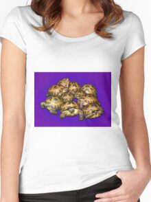 Greek Tortoise Group on Purple Background Women's Fitted Scoop T-Shirt