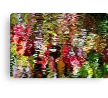 japanese water garden Canvas Print