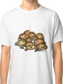 Greek Tortoise Group Classic T-Shirt