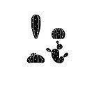 Black Cactus B by George Williams