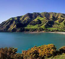Cable Bay Panorama by Charles Kosina