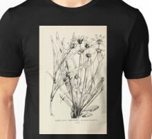 Southern wild flowers and trees together with shrubs vines Alice Lounsberry 1901 172 Sunflower Unisex T-Shirt