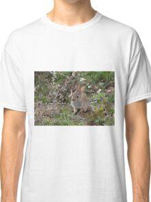 Baby Rabbit digitally altered. Classic T-Shirt
