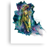 Horse Chained Beauty Canvas Print