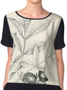 Southern wild flowers and trees together with shrubs vines Alice Lounsberry 1901 036 Woolly Pignut Chiffon Top