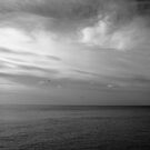 View from Cromer Pier (Monochrome) by Dale Rockell