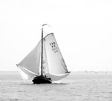 Vintage Sailing on the Eastern Scheldt, The Netherlands by VanOostrum