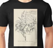Southern wild flowers and trees together with shrubs vines Alice Lounsberry 1901 085 Boynton's Robinia Unisex T-Shirt