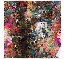 Dogs & Dreams Poster
