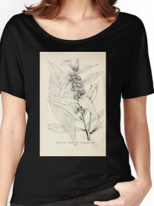 Southern wild flowers and trees together with shrubs vines Alice Lounsberry 1901 168 Goldon Rod Women's Relaxed Fit T-Shirt