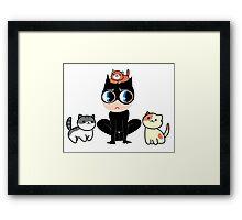 Catlady Framed Print