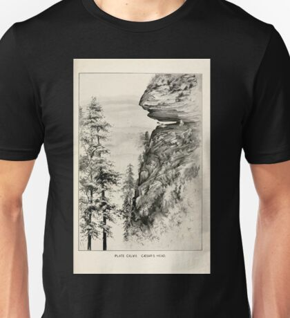 Southern wild flowers and trees together with shrubs vines Alice Lounsberry 1901 146 Caesar's Head Unisex T-Shirt