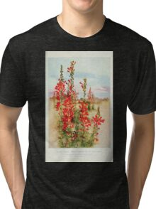 Southern wild flowers and trees together with shrubs vines Alice Lounsberry 1901 147 Raven Footed Gilia Tri-blend T-Shirt
