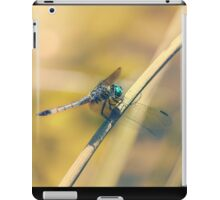 The Dragon's Roost iPad Case/Skin