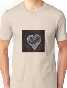 Ordinary Love Unisex T-Shirt