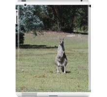 Trio of kangaroos iPad Case/Skin