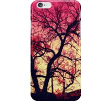 Positive Experience iPhone Case/Skin