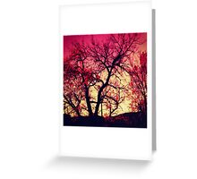 Positive Experience Greeting Card