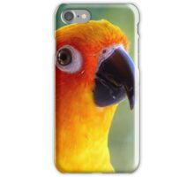 I Might Be Up To Mischief! - Sun Conure NZ iPhone Case/Skin