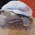 """Tortoise 2"" by Richard Robinson"