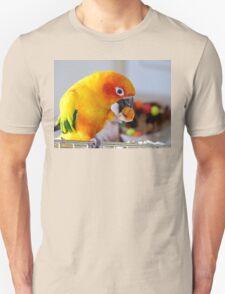 An Orange Feast - Sun Conure  Unisex T-Shirt