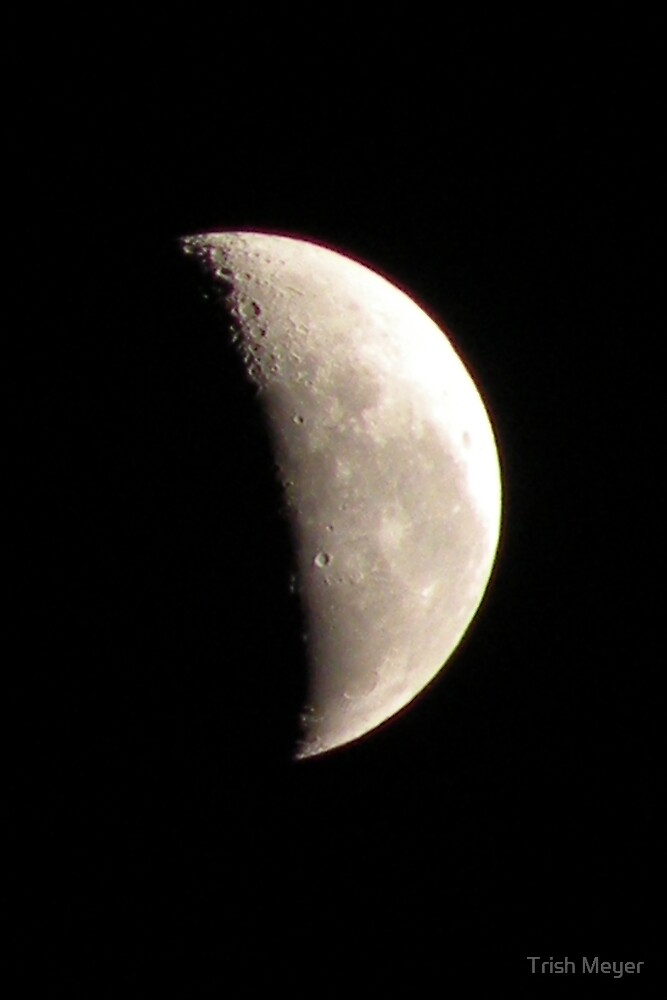 Half Moon 6 June 2010 by Trish Meyer