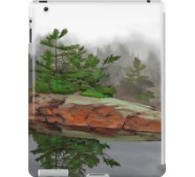 Lonely Point iPad Case/Skin