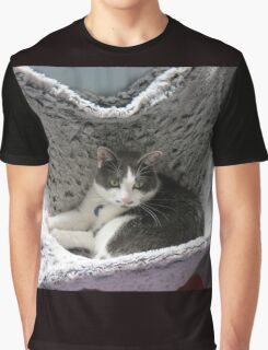 Cosy Cookie - Friendly Feline Graphic T-Shirt