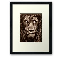 Lion - Charcoal drawing of a Lion Framed Print