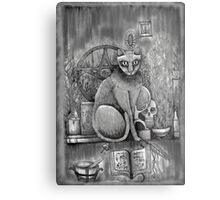 witch cat Metal Print