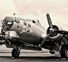 B-17 Bomber Airplane Aluminum Overcast by Amy McDaniel
