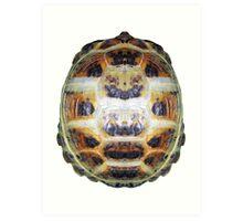Tortoise Shell - Carapace Art Print