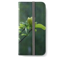 A Tree With Flowers iPhone Wallet/Case/Skin