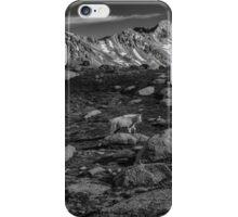Mountain goat on top of Colorado Mountains iPhone Case/Skin