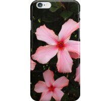 Four Hibiscus Flowers iPhone Case/Skin