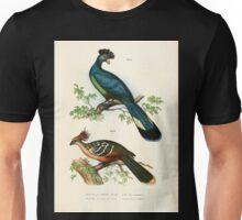 Bilder atlas zur Wissenschaftlich populären Naturgeschichte der Vögel in ihren sämmtlichen Hauptformen Leopold Joseph Fitzinger 1864 039 Unisex T-Shirt