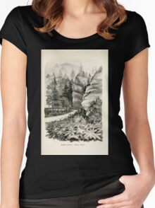 Southern wild flowers and trees together with shrubs vines Alice Lounsberry 1901 137 Stack Rock Women's Fitted Scoop T-Shirt