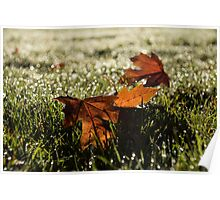 Essence of Autumn Poster
