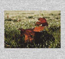 Essence of Autumn Baby Tee