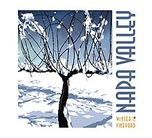 Winter in the Vineyard - White Photographic Print